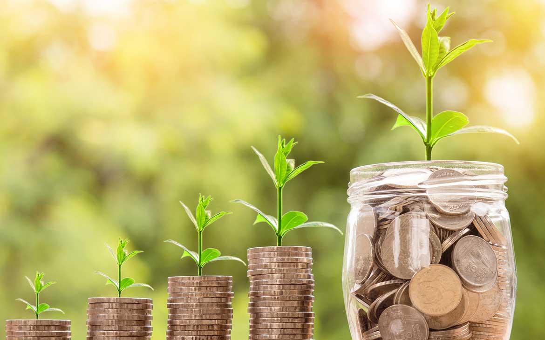 Fondi d'Investimento Rosa: cosa sono e come funzionano?